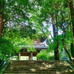 フォトアルバム:夏の功山寺